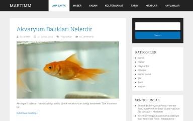 http://martimm.com screenshot