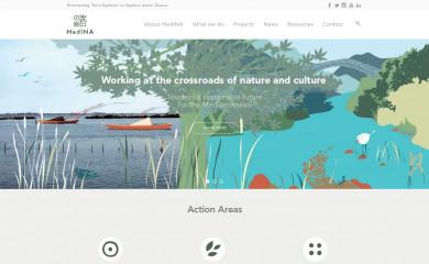 med-ina.org screenshot