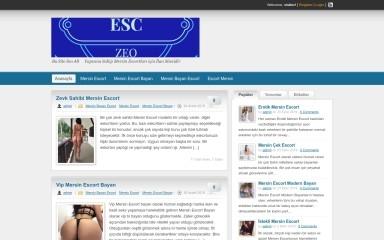 mersinal.com screenshot
