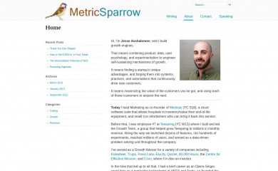 metricsparrow.com screenshot