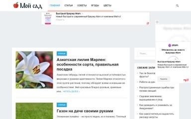 moysadinfo.ru screenshot