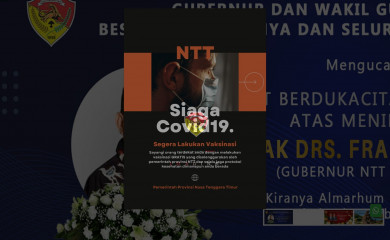 nttprov.go.id screenshot