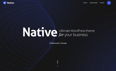 http://nativewptheme.net/ screenshot