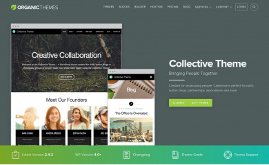 http://www.organicthemes.com/theme/collective-theme/ screenshot