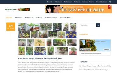 ayobudidaya.com screenshot