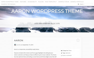 https://aaron.theme.tips screenshot