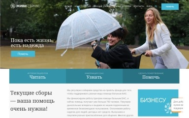 alsfund.ru screenshot
