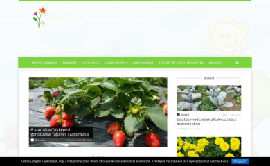 http://ankert.hu screenshot