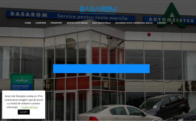 basarom.ro screenshot