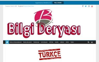 bilgideryasi.org screenshot