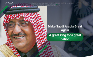 binayef.com screenshot