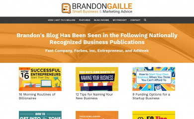 http://brandongaille.com screenshot