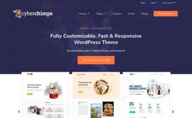 http://cyberchimps.com/responsive-theme/ screenshot
