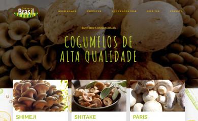 http://chacbrasil.com.br screenshot