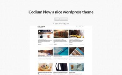 http://codiumnow.emploinow.fr/ screenshot