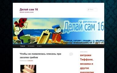 http://delajsam16.ru screenshot