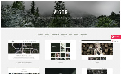 Vigor screenshot