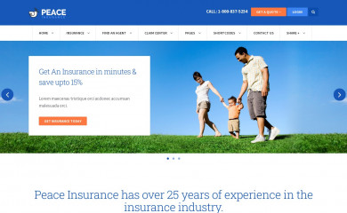 Insurance screenshot