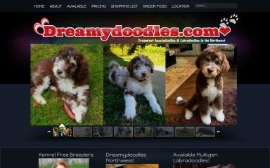 dreamydoodles.com screenshot