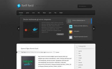 feritterzi.com screenshot