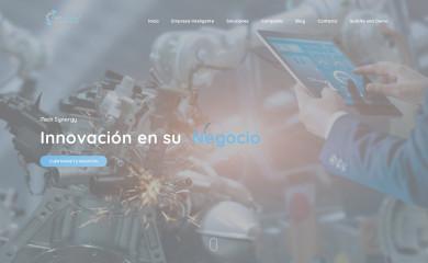 itechsynergy.com screenshot