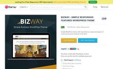 BizWay Pro Responsive Theme screenshot