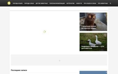 http://kot-pes.com screenshot