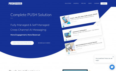 pushpros.com screenshot