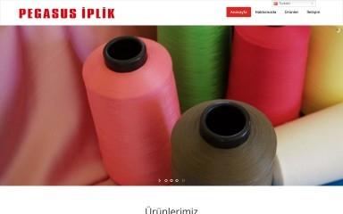 pegasusiplik.com.tr screenshot