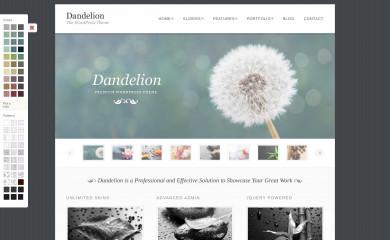 http://pexetothemes.com/demos/dandelion_wp/ screenshot
