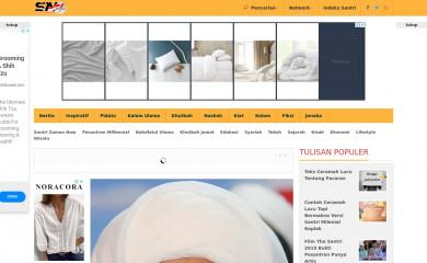 santrinow.com screenshot