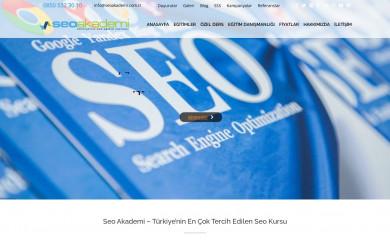 seoakademi.com.tr screenshot