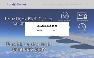 http://turkishfly.net screenshot
