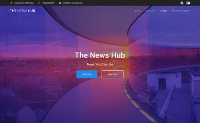 the-newshub.com screenshot