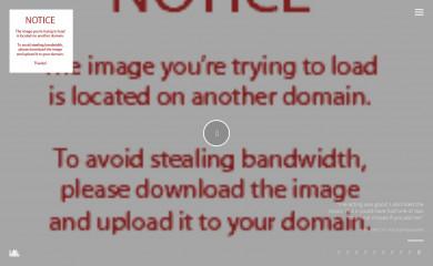 http://themes.themolitor.com/vysual screenshot