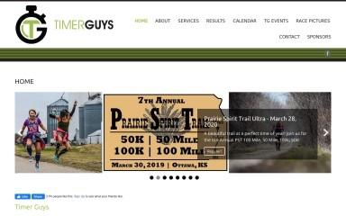 timerguys.com screenshot