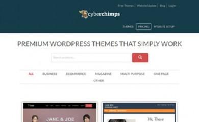 CyberChimps Pro Starter Theme screenshot
