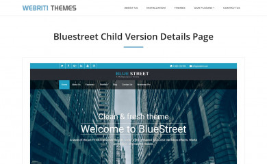 Bluestreet screenshot