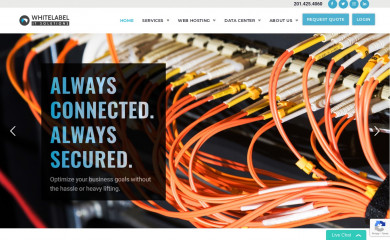 whitelabelitsolutions.com screenshot