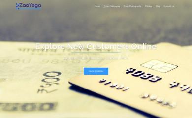 zaayega.com screenshot